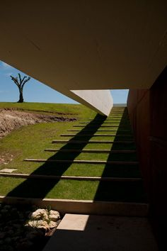 Stairway down to the house, which is built partially in-ground. By Topos Atelier de Arquitectura