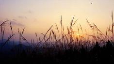 Χρονικό των Θρησκευτικών Διώξεων στην Κίνα «Η ΣΥΓΚΑΛΥΨΗ» Celestial, Sunset, Outdoor, Outdoors, Sunsets, Outdoor Games, The Great Outdoors, The Sunset