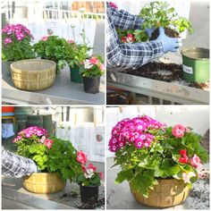 From start to finish. A beautiful plant basket created by one of our talented designers! Order yours today at www.dundalkflorist.com. #DundalkFlorist