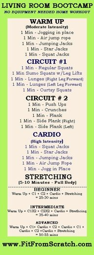 Fit From Scratch: Living Room Bootcamp Workout  **link is wrong....but just do the workout and smile!!!...X