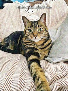 Athena Cat Goddess Wise Kitty: Elegant Pose On A Hot Day #CaturdayArt Cruelty Free Shop, Photo Editor Free, Gotcha Day, Hot Days, Animal Paintings, Art Blog, Cat Art, Animal Pictures, Pet Adoption