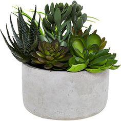 Artificial Cactus Plant Cement Pot