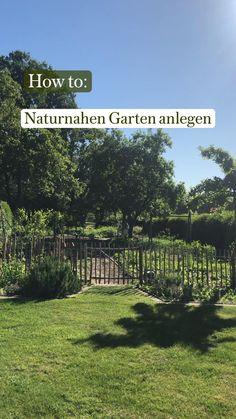 Gemüseanbau In Kübeln, Potager Garden, Garden Whimsy, Gardening, Organic Farming, Where The Heart Is, Horticulture, Garden Projects, Backyard