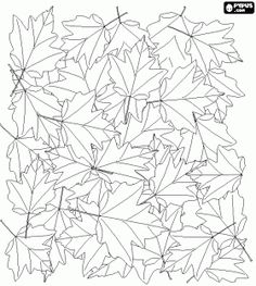 Fallen leaves on the ground, a typical image of autumn coloring page - bjl