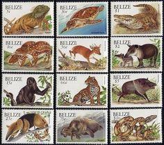 Belize animal stamps