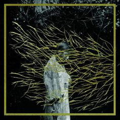 "forest swords - ""engravings""  experimental, freak folk, drone"