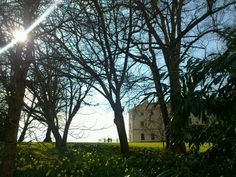 Beautiful spring day at Saltram, Devon