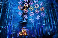 cant wait to dance around in the forest!
