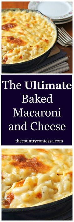 ultimate crowd pleasing comfort food in the richest, creamiest sauce. Baked in the oven for that golden cheesy crust.The ultimate crowd pleasing comfort food in the richest, creamiest sauce. Baked in the oven for that golden cheesy crust. Side Dish Recipes, New Recipes, Vegetarian Recipes, Dinner Recipes, Cooking Recipes, Favorite Recipes, Recipies, Cooking Games, Vegetarian Cooking