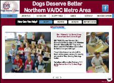 Dogs Deserve Better, Northern Virginia. Foster