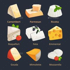 Cartoon Illustration of Different Cheeses. Vector