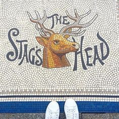 The Stag's Head  #tiles #ihavethisthingwithtiles #ihavethisthingwithfloors #floor #floors #flooring #dublin #ireland #interior #bar #pub #bars #design #decor #shoes #fromwhereistand #floorsofdublin #doorsofdublin #lovindublin #dublin #dublincity #art #selfeet #adidas #sneakers #colors #colour #mosaic #travel #traveler