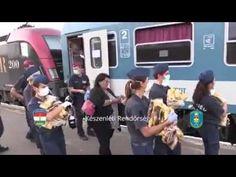 Des migrants jettent les vivres offerts par les autorités