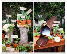 escort cards double as favors, plus a mailbox for guests to drop their wedding cards