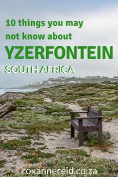 10 things you may not know about Yzerfontein, West Coast South African Holidays, Sa Tourism, All About Africa, West Coast Road Trip, Slow Travel, Seaside Towns, Africa Travel, Countries Of The World, Travel Inspiration