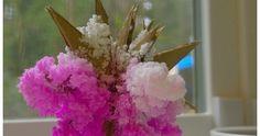 Sakura, crystal salt garden, science, experiment, capillarity, plants, nutrients, bluing agent, Mrs Stewart, ammonia, salt, egg carton