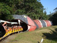 Dino magic - O  trem no Beto Carrero é cheio de surpresas. Está preparado?