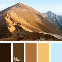 Resource that helps you in color selection, specially created with this aim; it is the generator of inspiration. Nature Color Palette, Colour Pallete, Color Combos, Color Palettes, Pinterest Instagram, Design Industrial, Room Color Schemes, Color Balance, Design Seeds