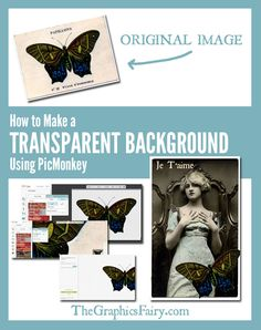 Make a Transparent Background Using PicMonkey! By Emily for The Graphics Fairy