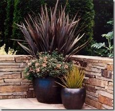 15641_0_4 Container Plants, Container Gardening, Flower Gardening, Garden Pool, Lawn And Garden, Landscape Design, Garden Design, Traditional Landscape, Potted Plants