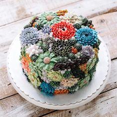Succulent cakes!