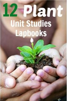 12 free lapbook and unit studies on plants. Going to use this for my youngest's biology studies this year! #homeschool #lapbook
