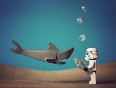 Stormplongeur face à une requin - Artist : Balakov  http://www.flickr.com/photos/balakov