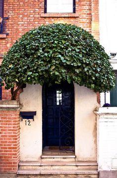 front door // front entry // entry // urban // European // archway of greenery // simple // navy door // wrought iron gate Grand Entrance, Entrance Doors, Doorway, Garage Doors, Cool Doors, Unique Doors, Porches, When One Door Closes, Door Knockers