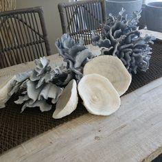 "photo: ""Large variety of unique coral just arrived! Condo Kitchen Remodel, Coral, Unique, Plants, Interiors, Home Decor, Beach, Decoration Home, Room Decor"