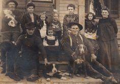 Antique Old West Photo Family Border Collie Dog Hunt Spaniel White Cat