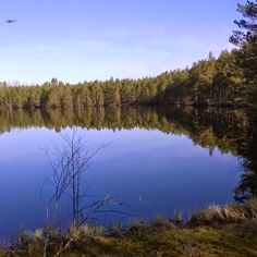 A pond in the middle of forest in Southern part of Finland. Metsälampi alkukeväällä.