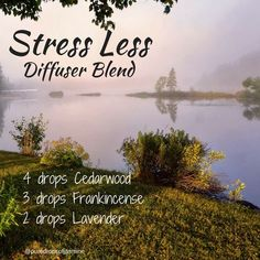 Diffuser Blend - Stress Less This is a blend to take the edge off your stress and anxiety. It consists of Cedarwood, Frankincense and Lavender Essential Oils For Stress, Essential Oil Uses, Doterra Essential Oils, Young Living Essential Oils, Cedarwood Essential Oil, Essential Oil Diffuser Blends, Doterra Diffuser, Aromatherapy Oils, Diffuser