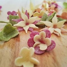 Pasta Fiori – Pasta flowers: We have to confess that after hours of practice, we have still been unable to perfect the art of making orrecchetti (little ears). This is the reason The Pasta Ma… Colored Pasta, Pasta Art, Make Your Own Pasta, Lotsa Pasta, Romantic Meals, Joy Of Cooking, Pasta Maker, Cookery Books, Edible Food