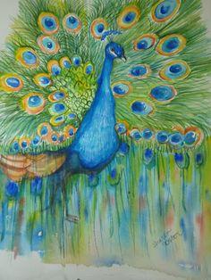 Peacock watercolors paintings original, Bird painting, Peacock Wall Art, 8 x 10…