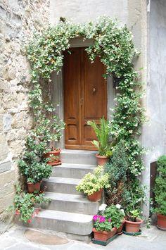 At front door with Chinese star jasmine - Modern Jasmine Vine, Jasmine Plant, Outdoor Planters, Garden Planters, Garden Art, Garden Design, Home And Garden, Garden Ideas, Gardens