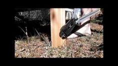 How to set up a trip line video | 9 Kickass Booby Traps to Rig Your Homestead #survivallife www.survivallife.com