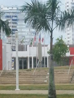 En esta foto hay 3 banderas las cuales alguna se encuentra desgastada.