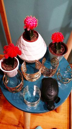 Cactus rose flashy et jolis bijoux <3 #bazardefilles #interditauxhommes #ambiance #boutique