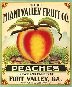 vintage fruit label