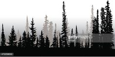 treeline in silhouette with the front row being all black and pine trees in the background in grey.
