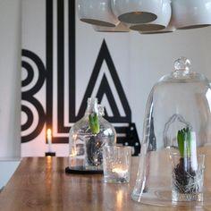 die besten 25 hyazinthe ideen auf pinterest. Black Bedroom Furniture Sets. Home Design Ideas