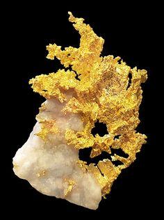 #Gold #Quartz Eagle's Nest Mine, Placer County, California.