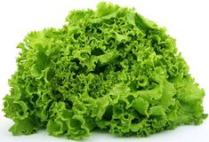 Varieties of lettuce - Iceberg, butter head, leaf, and romaine. Which type of lettuce is the best for us. How prepare lettuce. Types of lettuce Hydroponic Vegetables, Hydroponic Plants, Hydroponics, Fruits And Vegetables, Veggies, Hydroponic Solution, Hydroponic Tomatoes, Hydroponic Lettuce, Growing Vegetables