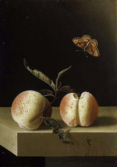 Adriaen Coorte (c.1693-95) 'Still life with two peaches and a butterfly' paper on panel, Royal Picture Gallery, Mauritshuis by Plum leaves, via Flickr