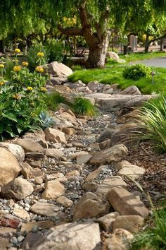 the line of dark rocks creates a very serene gravel garden/dry creek.I am going to be putting in a dry creek bed in my backyard at the end off my down spout where all of the mulch always washes away.I already have all of the rock to put in place. Landscaping With Rocks, Front Yard Landscaping, Landscaping Ideas, Dry Riverbed Landscaping, Landscaping Software, Country Landscaping, River Rock Landscaping, Landscaping Edging, Landscaping Melbourne