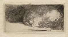 Rembrandt van Rijn Dutch, Sleeping Puppy c. 1640 Etching and drypoint White/Boon no. State iii/iii Rembrandt is famous now for his paintings, but it was his etchings that brought. Animal Paintings, Animal Drawings, Art Drawings, Nursery Paintings, Rembrandt Drawings, Rembrandt Etchings, Rembrandt Paintings, Sleeping Puppies, Ecole Art