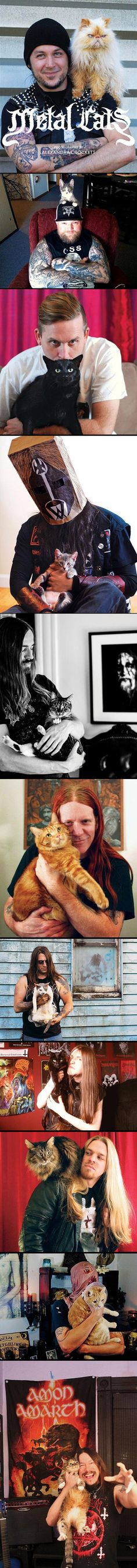 Cats Of Metal..nothing better than seeing a Metal man with a cat ;)