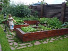 Декоративный огород, фото сайта www.designer-sada.ru