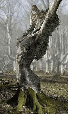 Los Dioses de la Sincronicidad: Curso Educativo de Astrologia/Psicologia Holística: 1h) El significado psicológico/mitológico junguiano de Quirón.Urano.Neptuno.Plutón en los Signos del Zodiaco
