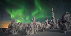 Die Inselgruppe Spitzbergen  zeigt eine andere Welt. Zwischen Gletschern und Eisbergen ist die Natur in der Mitternachtssonne ein Abenteuer.